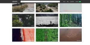 coverr-co-videos-natur-hintergrund