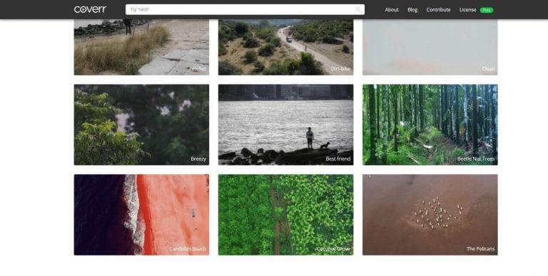 coverr-co-videos-natur-hintergrund