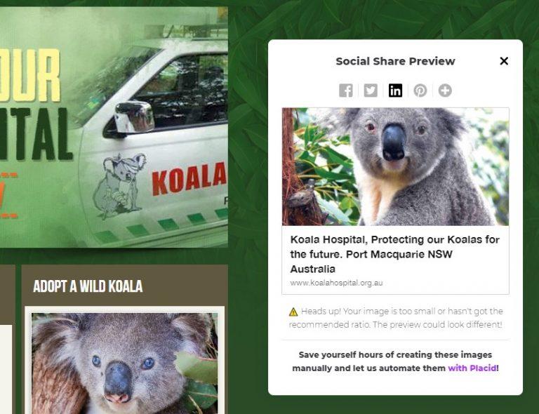 Social Share Preview Screenshot